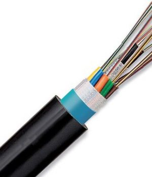 Usha Martin 12 Core Optical Fiber Price in Bangladesh.